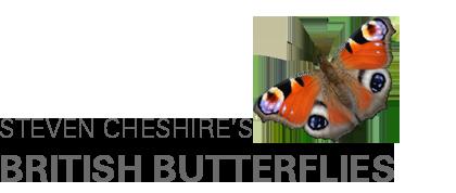 Steven Cheshire's British Butterflies