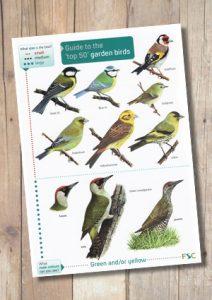 Top 50 Garden Birds